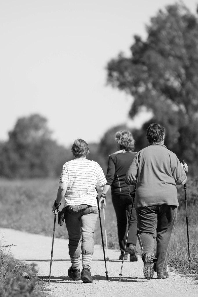2014-06-17 Tijd voor een fikse wandeling